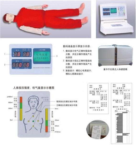 心肺复苏模型,心肺复苏仿真模拟人,心肺复苏仿真模型人 上海硕博公司